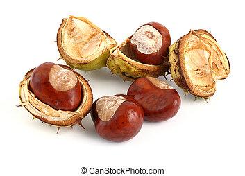 chestnuts on white