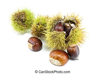 chestnuts in and out of there cases