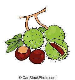 Chestnuts Set With Gradient Mesh, Vector Illustration