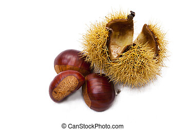 chestnuts - natural chestnuts, fresh fruits of the season of...