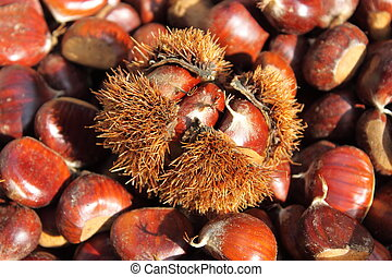 Chestnuts for sale in a greengrocery