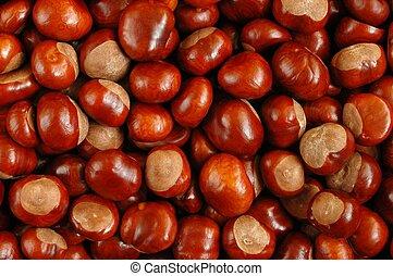 Chestnuts texture