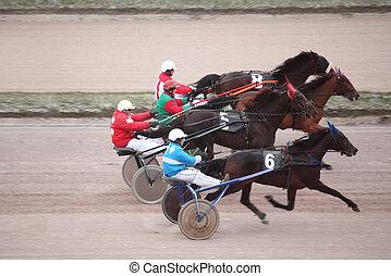 cheval, 2009, central, décembre, moscou, -, 1834., moscou, hippodrome, 6, europe, russia., basé, 6:, plus vieux, courses, trot