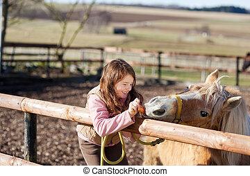Cheval, alimentation, carottes, jeune,  girl