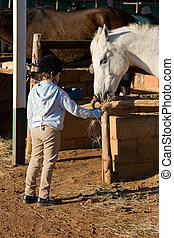 cheval, alimentation