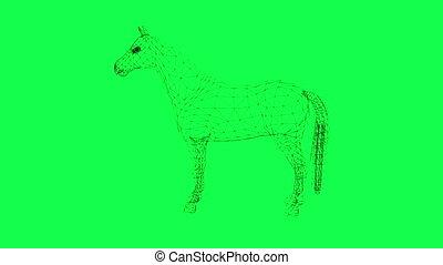 cheval, armature fil, isolé, vert, rotation, écran