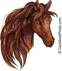 cheval brun, ondulé, crinière, portrait