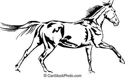 cheval, contour, vecteur, noir, blanc, galoper