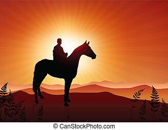 cheval, coucher soleil, fond, homme