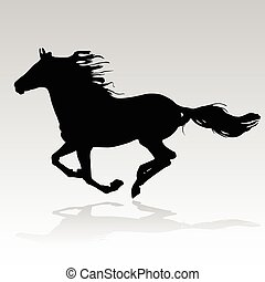 cheval, courant