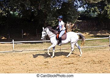 cheval, cours, femme, trains, équitation, cavalier