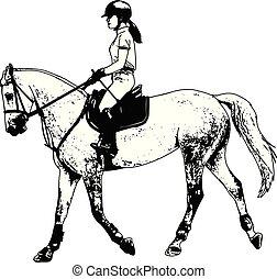 cheval, croquis, illustration, jeune, élégant, femme, équitation
