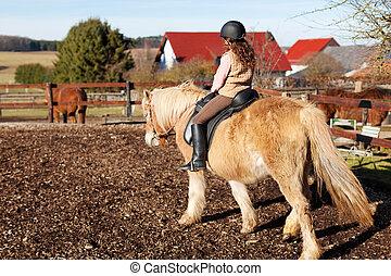 cheval, elle, loin, jeune, équitation, girl
