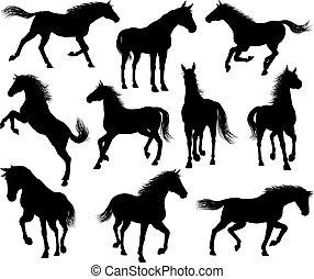 cheval, ensemble, silhouettes