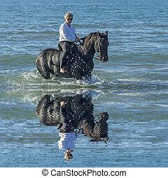 cheval, femme, mer
