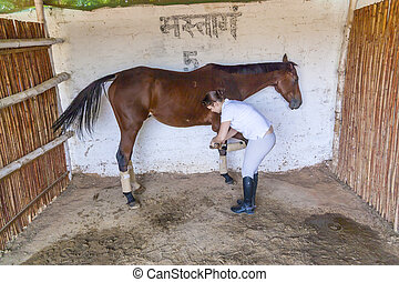 cheval, femme, sabot, nettoyage, elle