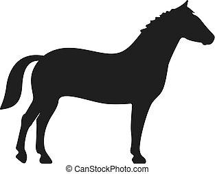 cheval, icône, vecteur