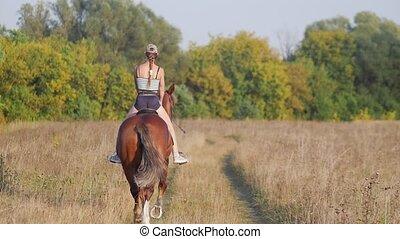 cheval, jockey, casquette, jeune, champ, vers, base-ball, forêt, équitation, girl