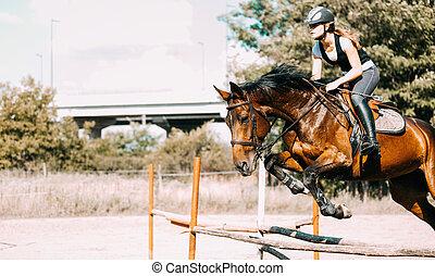 cheval, jockey, sur, saut, jeune, obstacle, femme