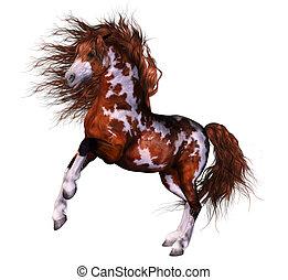 cheval, merveilleux