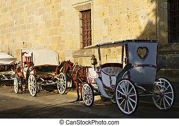 cheval, mexique, guadalajara, chariots, dessiné, jalisco