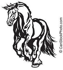 cheval noir, blanc