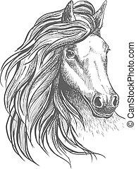 cheval, ondulé, tête, croquis, crinière