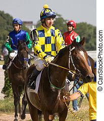 cheval, race., avant