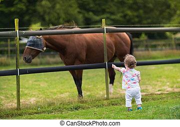 cheval, regarder, ferme, coucher soleil, dorlotez fille, adorable