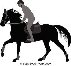 cheval, silhouette, jeune, élevé, équitation, qualité, homme