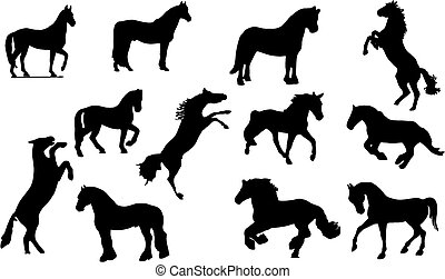 cheval, silhouette.