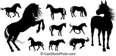 cheval, silhouettes