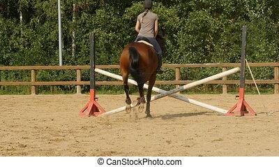 cheval, sur, barrière, sien, jockey, saut