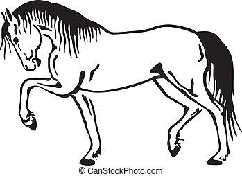 cheval, vecteur, croquis