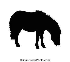 cheval, vecteur, illustration