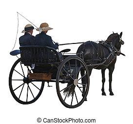 cheval, voiture, &