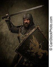 chevalier, attaque, moyen-âge, position