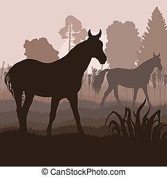 chevaux, champ, vecteur, fond