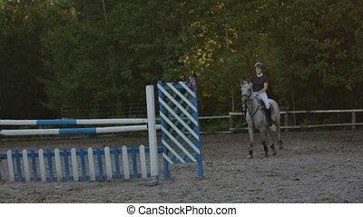 chevaux, cheval, lent, jockey., racing., sur, motion., jeune, sauter, competition., breeding., obstacles., femme, cavalier, horseman., formation, farm., équestre, avant