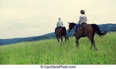 chevaux, couple, équitation, personne agee, nature., vue postérieure