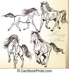 chevaux, dessiné, ensemble, vecteur, main