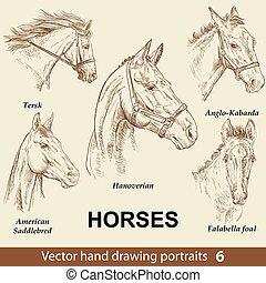 chevaux, dessin, 6, remettre ensemble