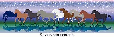 chevaux, galop, courant, vecteur, fond, nuit