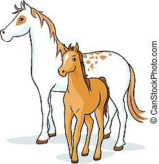 chevaux, jument, poulain, illu, -, vecteur