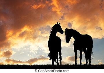 chevaux, silhouette, amoureux, à, coucher soleil