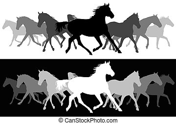 chevaux, silhouette, arrière-plan noir, blanc, trot