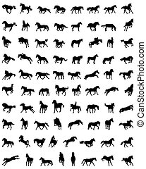 chevaux, silhouettes