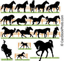 chevaux, silhouettes, ensemble, vecteur, 17