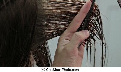 cheveux, brun, émondage, ciseaux, coiffeur