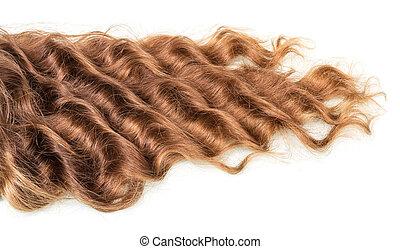 cheveux, brun, isolé, bouclé, white.